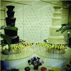 wedding-party-services